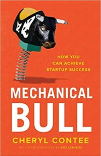 Mechanical Bull- How You Can Achieve Startup Success
